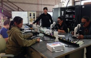 Nicholas lab