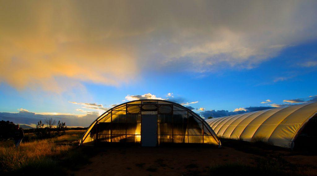 Apogee Spirulina Santa Fe New Mexico